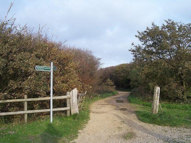 Tennyson Trail, Isle of Wight: Tennyson Trail - © Copyright Flickr user Bods
