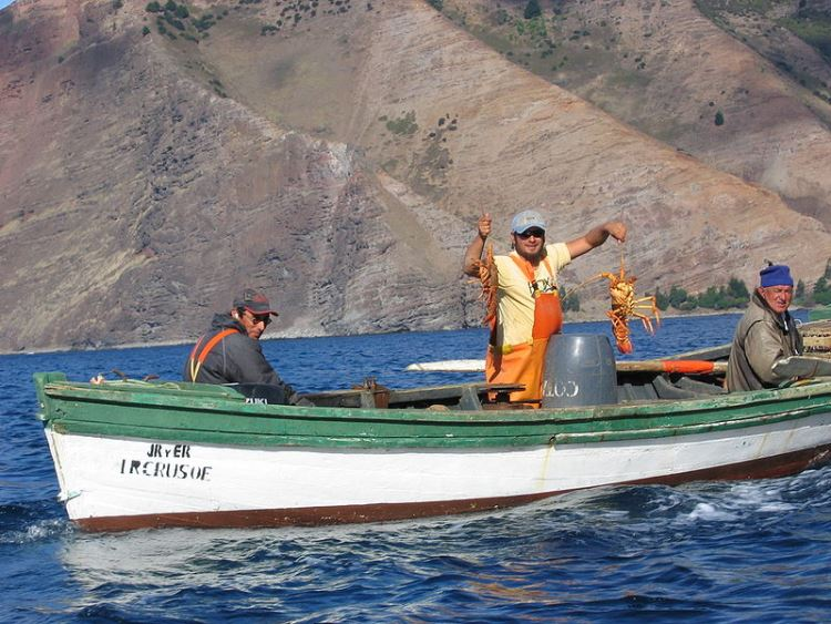 Juan Fernandez Islands: Juan Fernandez Islands - Lobster fishing - © Copyright Wikimedia Commons, Serpentus