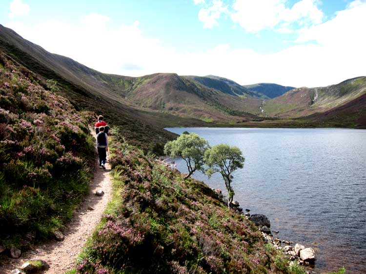 South along Loch Muick